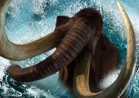 Arctic Mammoth